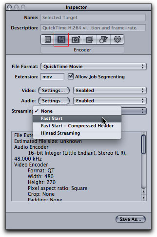 Compressor H 264 movies from FCP for the Web