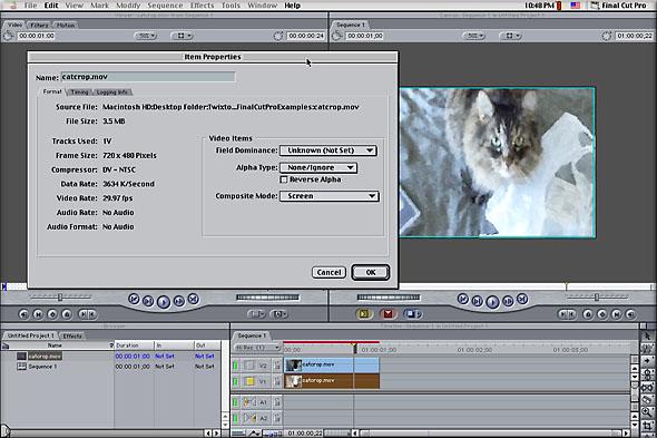 ReelSmart Motion Blur Pro Plugin for After Effects Download